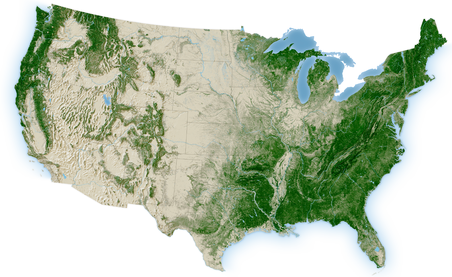 Map Of Usa Forests.Forest Atlas